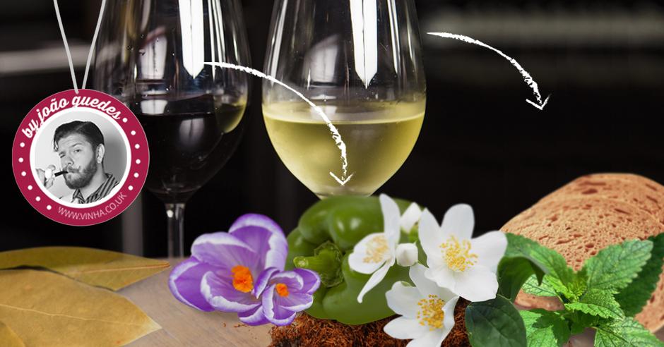 Les 3 types d'arômes dans le vin