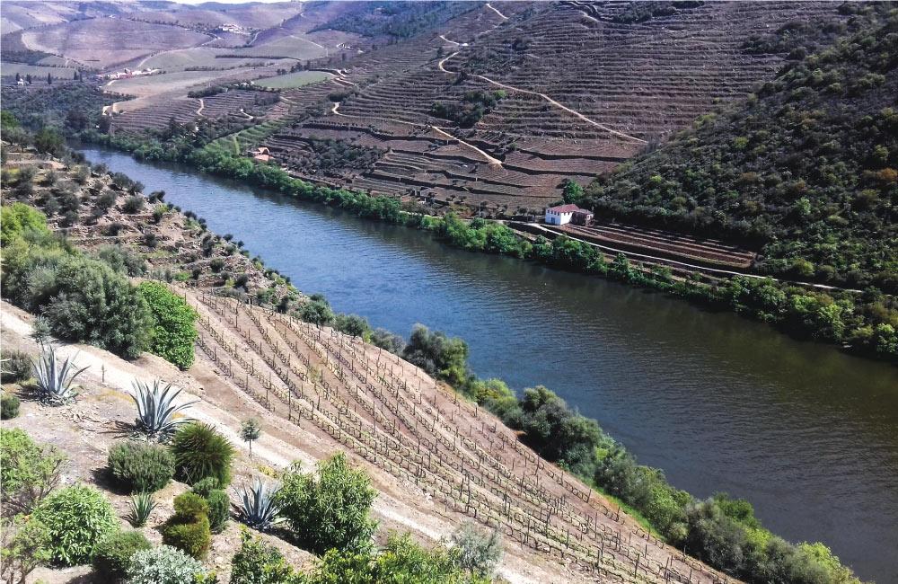 Les Secrets de la Vallée du Douro