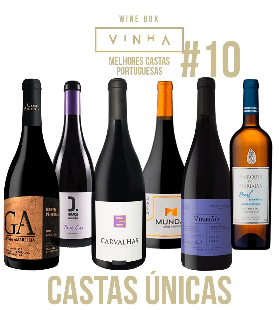 Wine Box Selection Rodolfo Tristão #10 Cépages portugais uniques Portugal